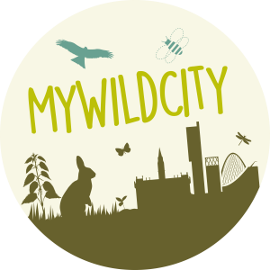 Lancashire Wildlife Trust, My Wild City campaign