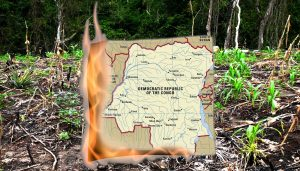 12 November 2020, Climate Change, Migration and DR Congo, Radical Late online with People's History Museum. Image of DR Congo map burning in woodland © Kooj Chuhan