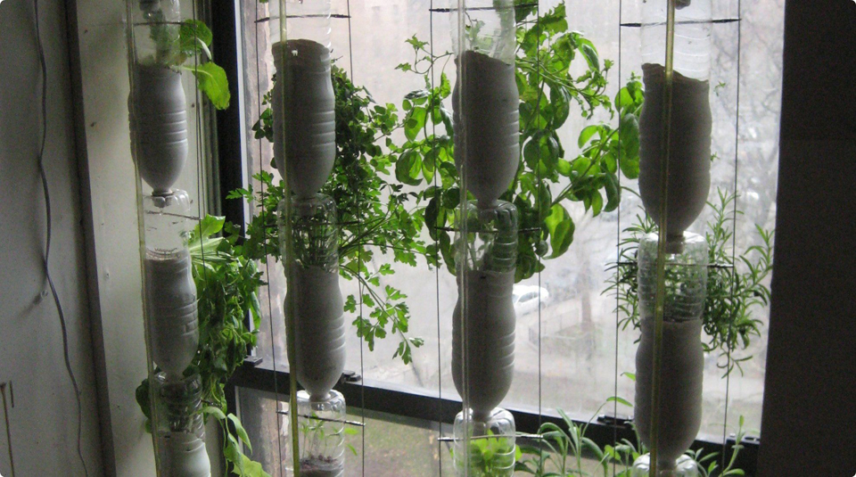 13 May 2021, Radical Late online - Think Globally Act, Locally: Space to Imagine, Time to Act with People's History Museum. Breakout session three Image of window farm by SparkCBC, licensed under CC